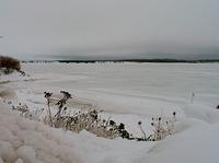 Wallace Harbour Under Ice